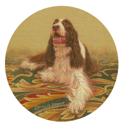 painting of a English Springer Spaniel by Rachelle Siegrist