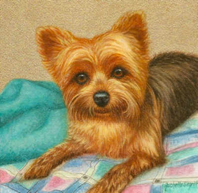 Commissioned Dog Painting by Rachelle Siegrist