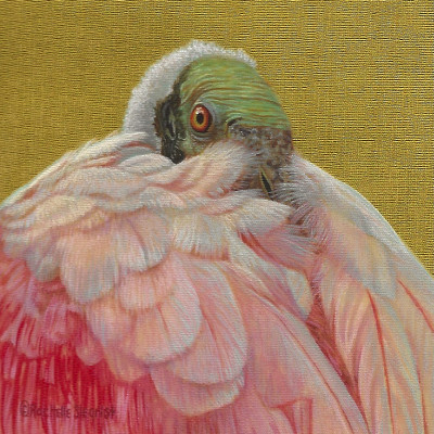 Bird Paintings by Wes and Rachelle Siegrist