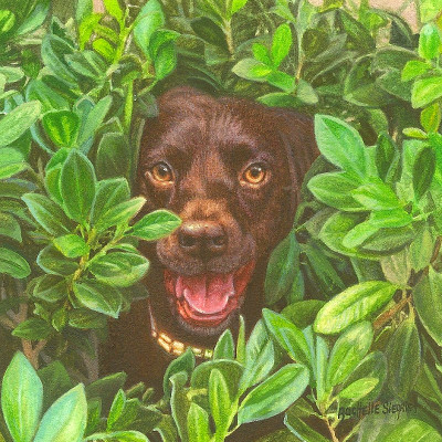 Commissioned Chocolate Lab Painting by Rachelle Siegrist