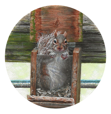 painting of a grey squirrel by Wes Siegrist