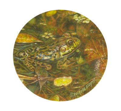 Miniature Painting of a Frog by Rachelle Siegrist