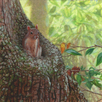 painting of a squirrel by Rachelle Siegrist