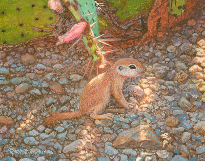 watercolor wildlife painting of a sonoran roundtable ground squirrel by Rachelle Siegrist
