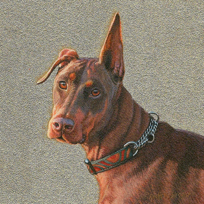 Commissioned miniature painting of an Doberman by Rachelle Siegrist