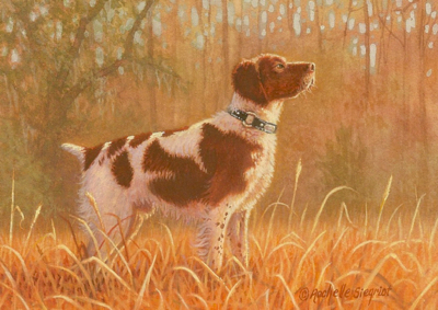 Commissioned Brittany Spaniel Painting by Rachelle Siegrist