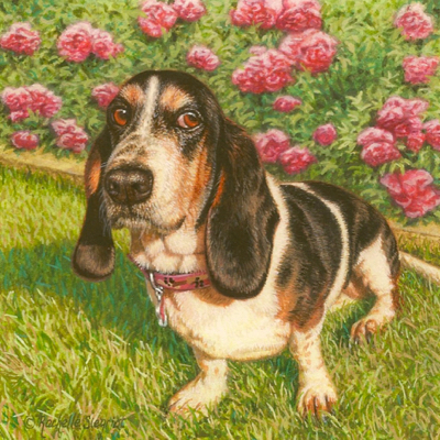 Commissioned miniature painting of a Basset Hound by Rachelle Siegrist