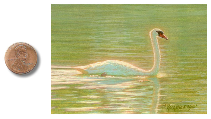 Miniature Painting of a swan by Rachelle Siegrist