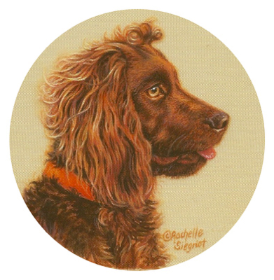 painting of a daschund by Rachelle Siegrist