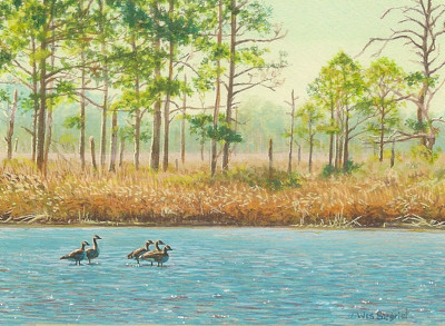 miniature painting of Canada Geese at Blackwater Refuge by Wes Siegrist