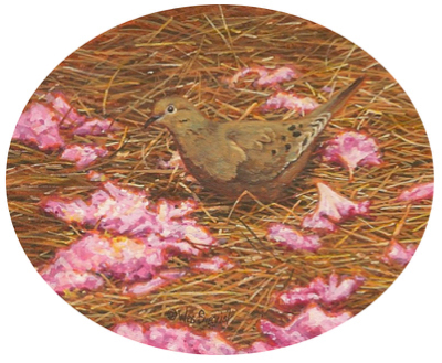 Miniature Painting of a Morning Dove by Wes Siegrist