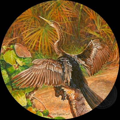 Anhinga Painting by Wes Siegrist