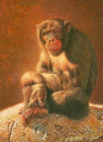 miniature painting of a chimpanzee