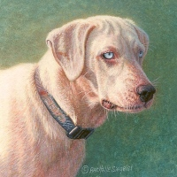 miniature painting of a dog