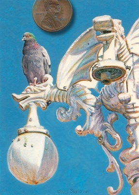 miniature Pigeon Painting by Wes Siegrist
