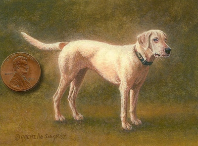 miniature painting of a dog by Rachelle Siegrist